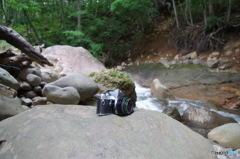 カメラ散歩・・・