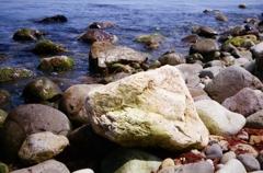 初夏の前浜・・・