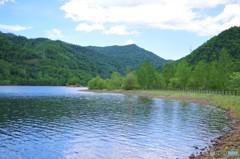 ダム湖湖畔・・・