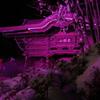善光寺灯明祭り(若紫色)