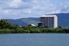 大池越しの薬師寺