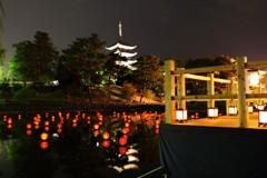 猿沢池に灯る光 ~五重塔~