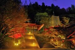 談山神社に灯りがともる