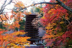 談山神社の紅葉④ ~Gradation~