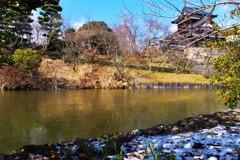 郡山城 ~雪と氷~