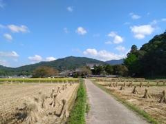稲刈りの季節 [ 飛鳥編 ]