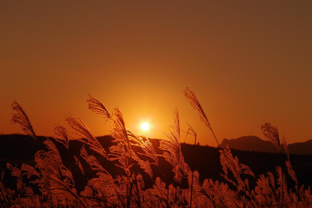 曽爾高原の夕暮れ