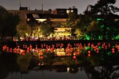 猿沢池に灯る光 ~池床~