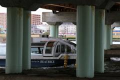 橋げたを通過する観光船