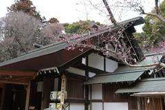 水戸常盤神社