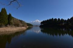 田貫湖の富士