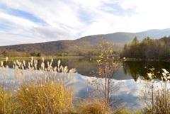 穏やかな湖畔で