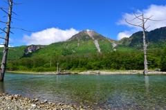 新緑の大正池と焼岳