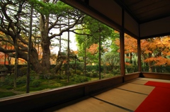 いいね!日本の秋 京都