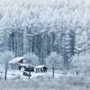 雪国の暮らし