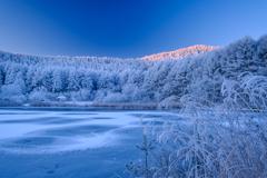 凍てつく夜明け