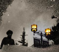 水溜りの灯