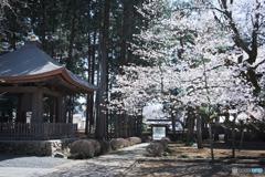 廣園寺の参道