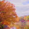 メッツァの秋