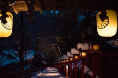 冬夜を灯す