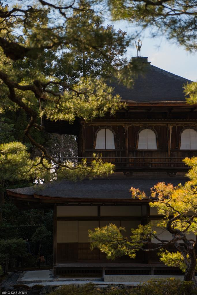 銀閣寺の横顔