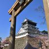 桜と青い空と小倉城 広角編 3