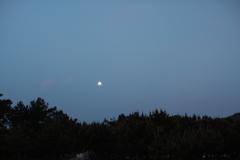 後ろを見たら月