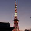台風一過の東京タワー