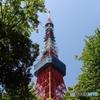 緑に囲まれた東京タワー