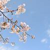 春空はパステル