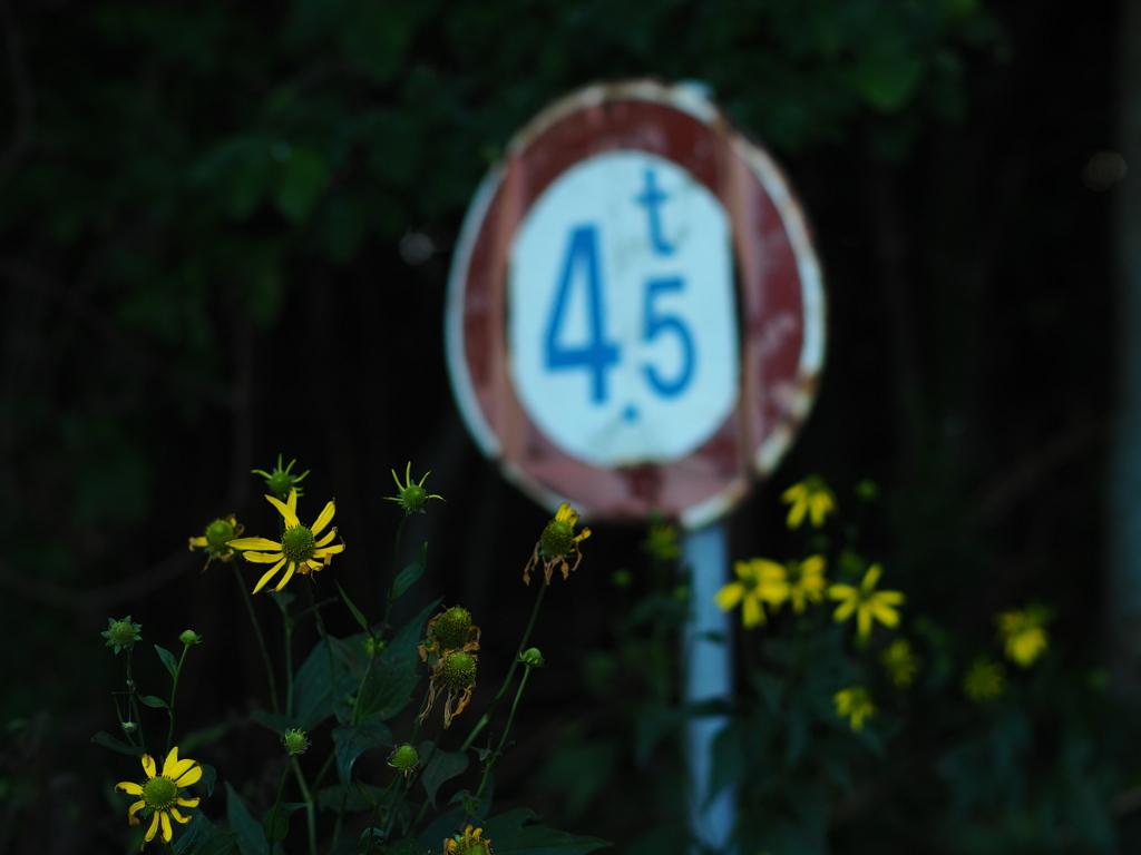 花と4.5