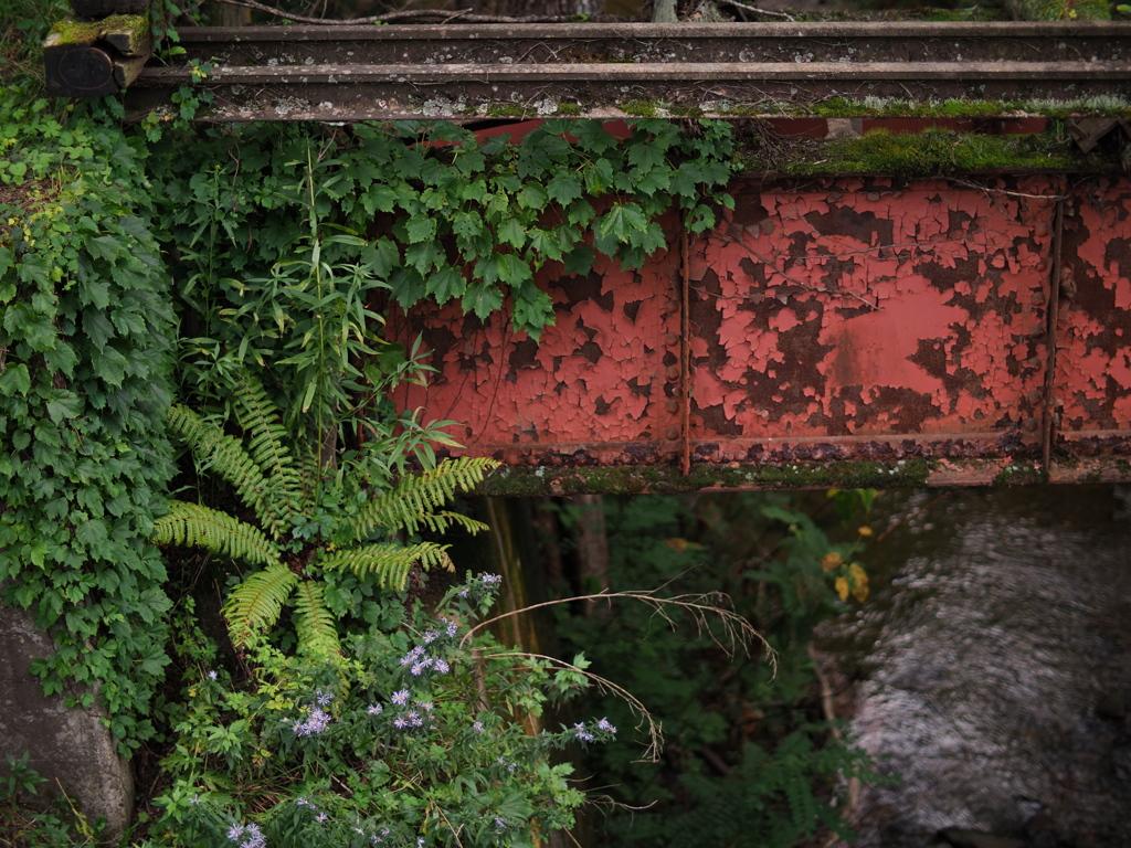 廃線の植物園