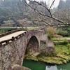 第二千三百三十五作 「枯れ木 枯れ枝の 石橋をわたり」 熊本県美里