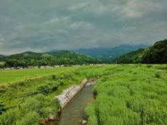第千八百十作  「とほく稲妻が 若稲揺らす いやに涼しい風が」 富山県魚津