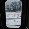 第二千作  「晦日となりて 汽車の窓辺に 寅次郎を想ふ」 新潟県中条