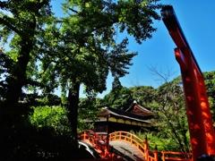 第千九百二十六作  「晴れて しづかな 赤鳥居」 京都府京都