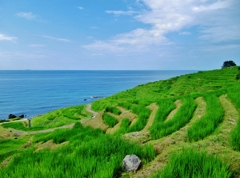 第二千五百七十二作 「畔に腰を そのさきの海」 石川県輪島