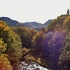 第二千三百五作 「秋の陽ぞんぶんに いただひて あゆむ」 北海道定山渓