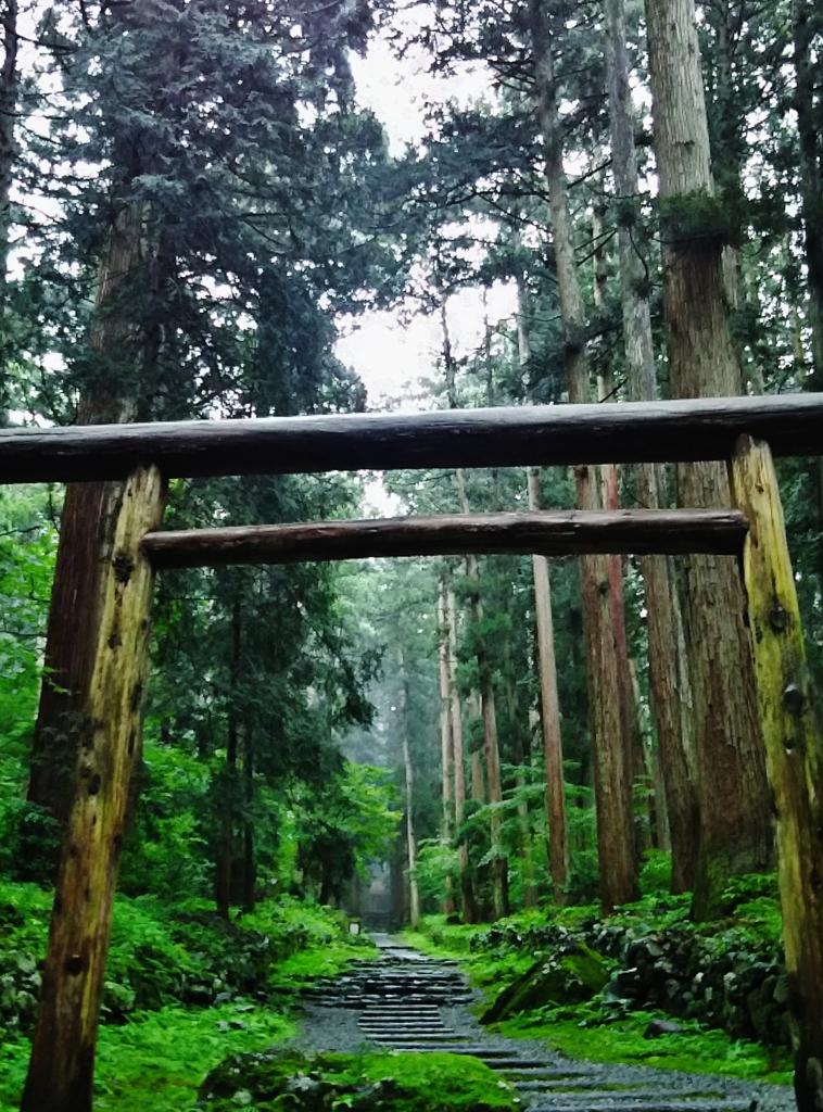 第千八百八十作  「石畳 さめざめ濡れて わたしも」 福井県勝山