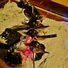 第千九百八十三作  「骨酒や 鰍こりこり 焼枯らし」 東京都多摩