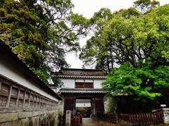 第二千四百六十二作 「雨あがる だいぶ繁つて 城門の樹々」 宮崎県飫肥