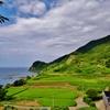 第二千五百九十五作 「ただ生きて それでよろしい 稲の風」 石川県輪島