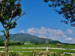 第二千百九十六作 「風の中 風に吹かれて あんたの名前を」 栃木県日光