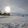 第二千四百二作 「吹雪 束の間の 薄日をいただく」 山形県鶴岡