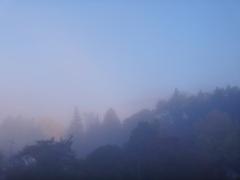 第千九百五十八作  「朝霧深く どこかで干物 焼けてゐる」 大分県由布院
