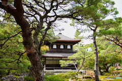 Kyoto Japan8