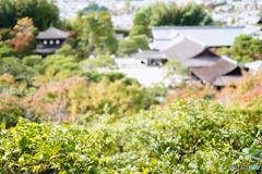 Kyoto Japan7