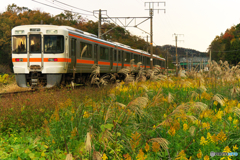 晩秋の江州 Ⅱ