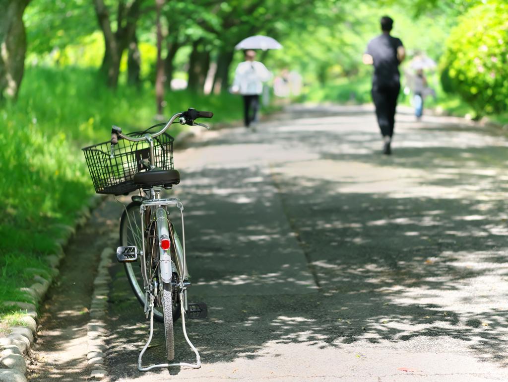 新緑の散歩道