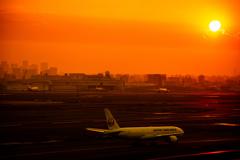 夕暮の羽田空港
